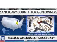 Sanctuary County for Guns