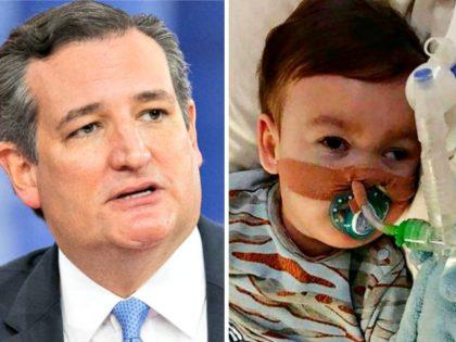 Ted Cruz, alfie-evans