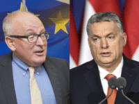 Timmerman Orban