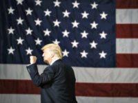 Trump Profile Flag consumer sentiment