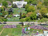 arial-view Easter Egg Roll