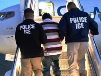 ICE Officers Deport Illegal Immigrant