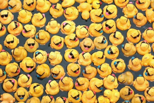 Plastic materials such as rubber ducks dunked in bathwater provide ideal conditions for bacterial and fungal growth, researchers found