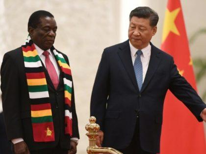 President Xi hails Mugabe's successor as 'old friend of China'
