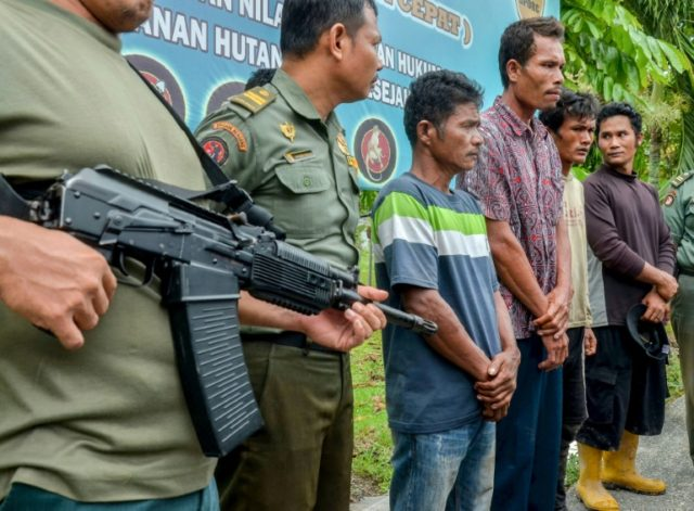 Indonesian armed rangers display four suspects charged with killing and eating four sun bears