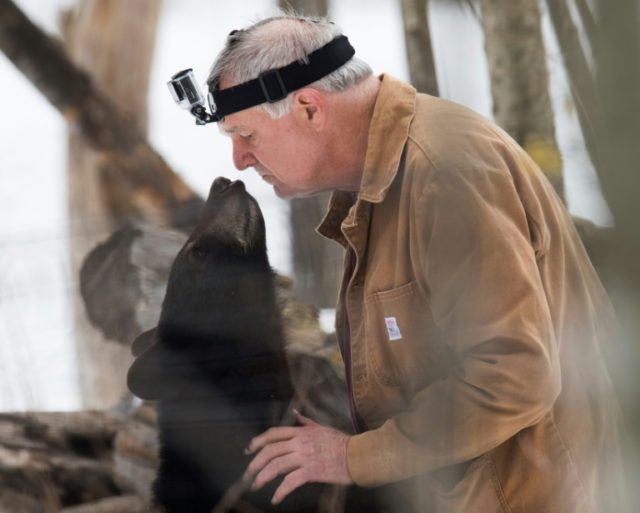 Ben Kilham, a wildlife biologist, takes in orphaned bear cubs until they are old enough to fend for themselves
