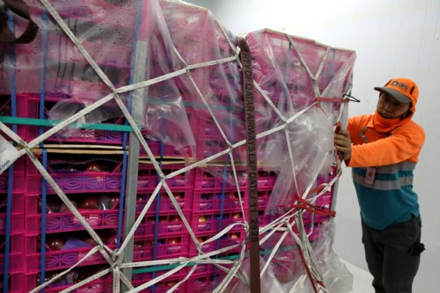 A worker pushes a crate of imported apples at Qatar's Hamad International Airport in Doha on July 20, 2017