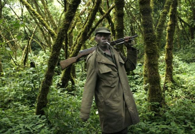 Congo: Virunga park says attack that killed 6 deadliest ever