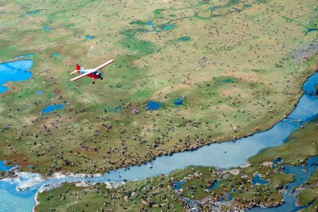 Oil, gas drilling in pristine Alaska refuge takes step ahead