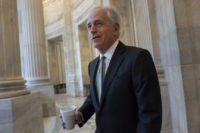 Corker says he won't oppose Democrat seeking his Senate seat