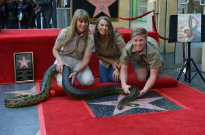 Steve Irwin gets posthumous star on Hollywood Walk of Fame