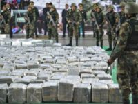 Drug cartel bust