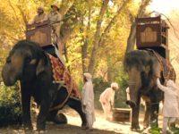 Elephantsworlds1