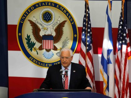 Friedman seal (Menahem Kahana / AFP / Getty)