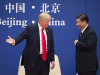 "TOPSHOT - US President Donald Trump (L) gestures next to China's President Xi Jinping during a business leaders event at the Great Hall of the People in Beijing on November 9, 2017. Donald Trump urged Chinese leader Xi Jinping to work ""hard"" and act fast to help resolve the North …"