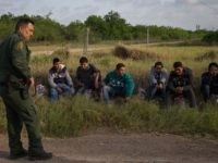 A Border Patrol agent apprehends illegal immigrants shortly after they crossed the border from Mexico into the United States on Monday, March 26, 2018 in the Rio Grande Valley Sector near McAllen, Texas. An estimated 11 million undocumented immigrants live in the United States, many of them Mexicans or from …