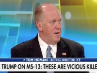 ICE Chief Defends Trump: 'Animals Kill to Survive, MS-13 Kills for Sport'
