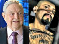 Soros, MS-13-gang-member