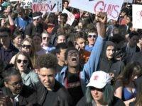 Student Gun Protest
