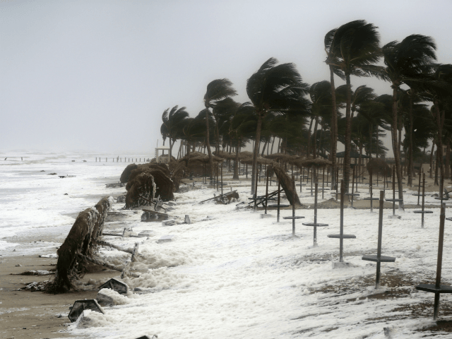 Tropical Cyclone Mekunu (23 May) — Desert Locust Alert