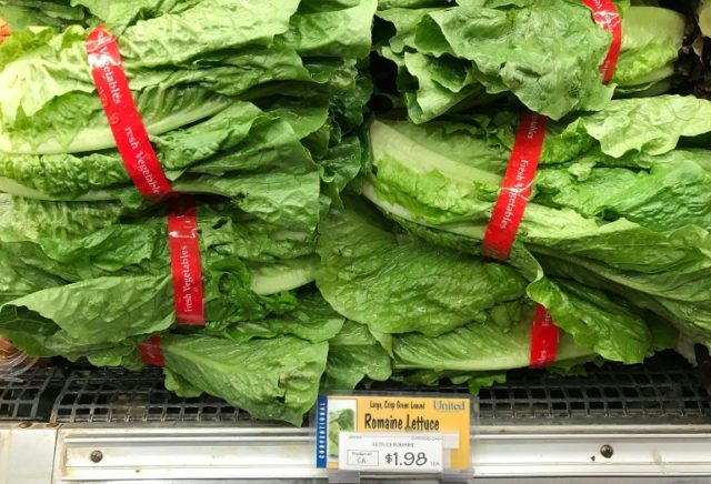 In April 2018, US authorities took the unusual step of telling people to throw out any romaine lettuce they had, and not eat it unless they were sure it was not from the Yuma, Arizona area