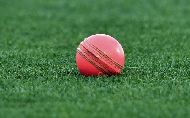 A pink cricket ball at the Adelaide Oval during the first day-night Test between New Zealand and Australia in 2015