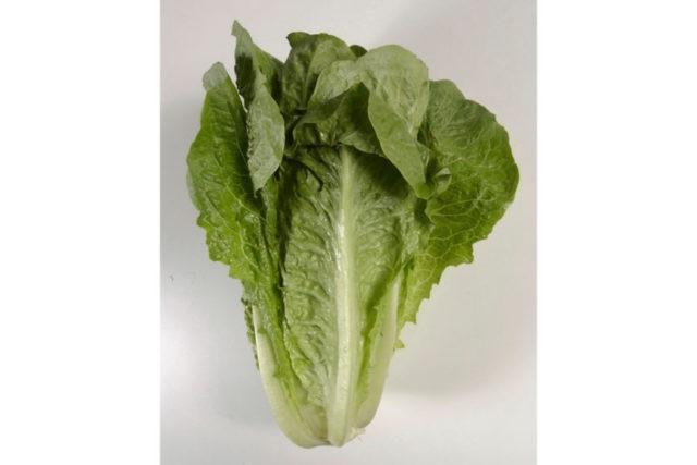 1st death reported in romaine lettuce E. coli outbreak