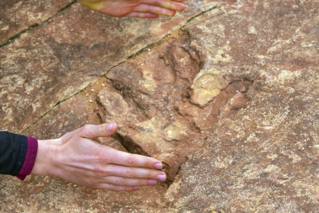 Dinosaur tracks at Utah park dislodged, thrown into lake