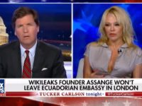 "Tuesday on Fox News Channel's ""Tucker Carlson Tonight,"" former ""Baywatch"" …"