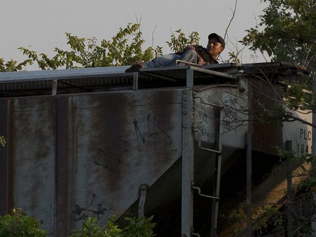 In this Aug. 26, 2014 photo, a migrant lying atop a moving freight train lifts his head to look toward a nearby federal police patrol car, as the train heads north from Arriaga, Chiapas state, Mexico. Convoys of Mexican federal police and immigration service employees in southern Mexico have begun …