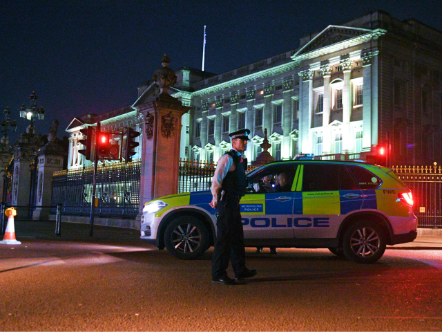 Man held over 'Taser' at Buckingham Palace