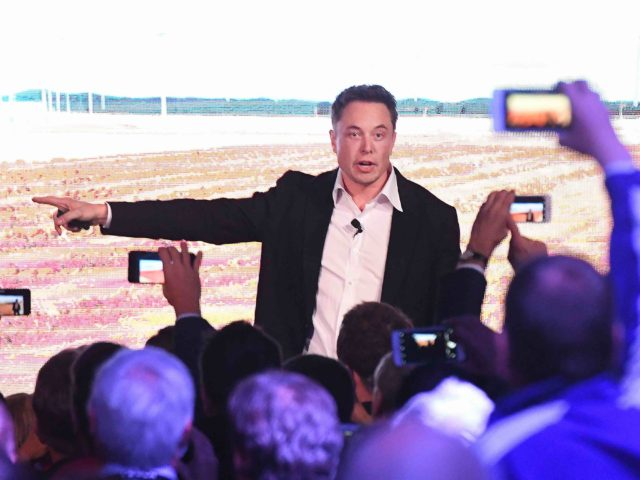 Elon Musk socialist (Mark Brake / Getty)