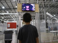 White House Flounders at Left's 'Kids in Cages' Rage