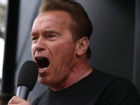 Arnold Schwarzenegger: Put Politicians in Cages, 'Not Innocent Kids'