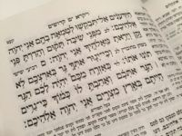 Leviticus 19 (Joel Pollak / Breitbart News)