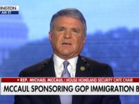 Rep McCaul: Dems 'Completely Interested' in Making Border Situation a Campaign Issue, 'No Interest' in Working GOP Constructively