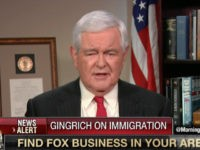 Gingrich: 'Democrats Stand' for Millions of People Coming in Illegally Through Open Borders