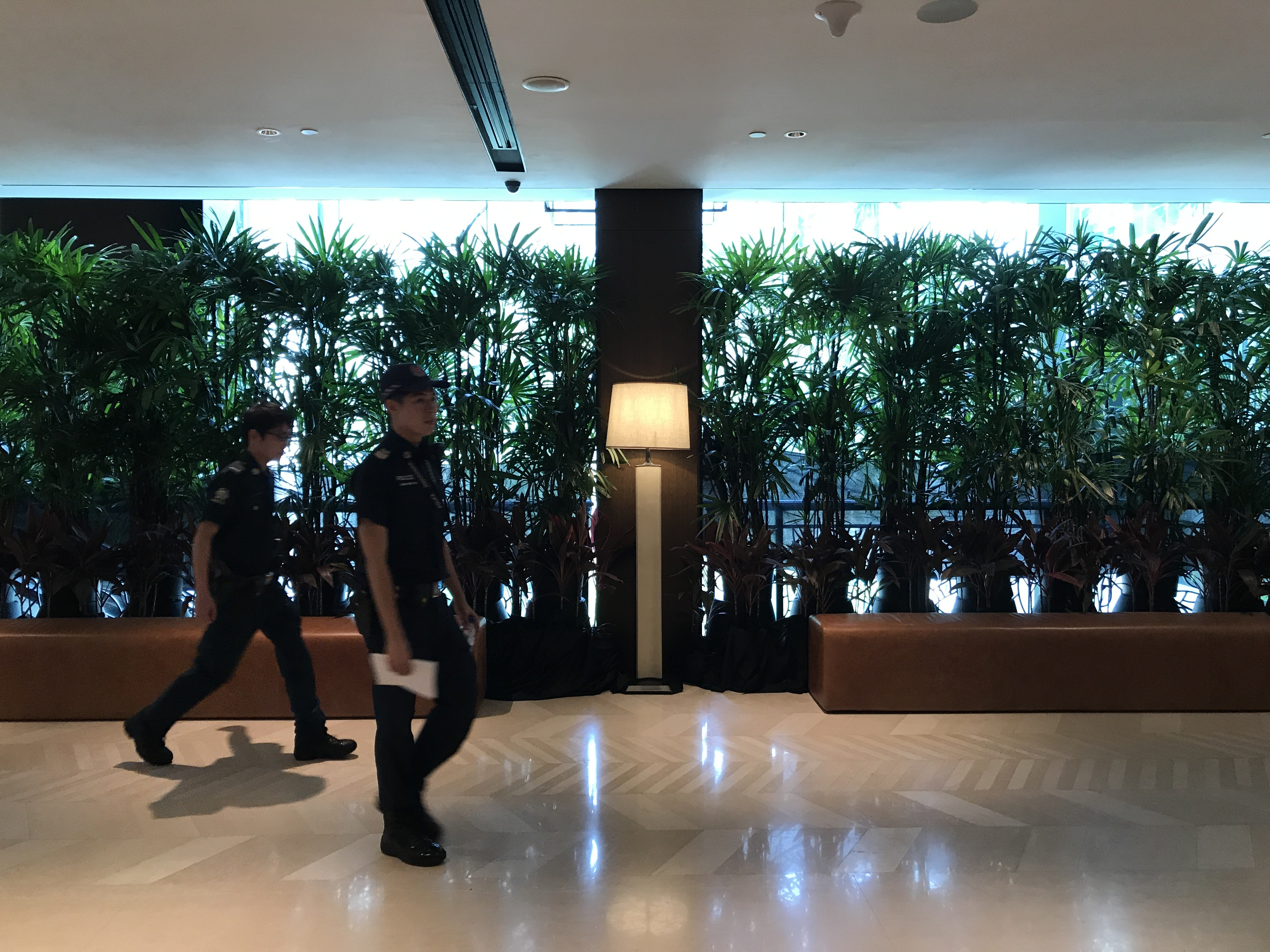 Tall plants were brought in to give officials privacy as they walked from one hotel tower to another. (Kristina Wong/Breitbart News)