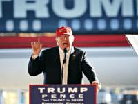 Trump, Minnesota