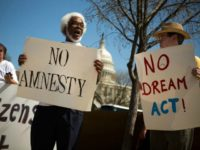 anti-amnesty-anti-dream-act-protest