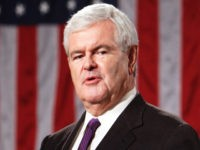 Gingrich: Dems Can't Win as 'Pro-Criminal,' 'Anti-Police Party'