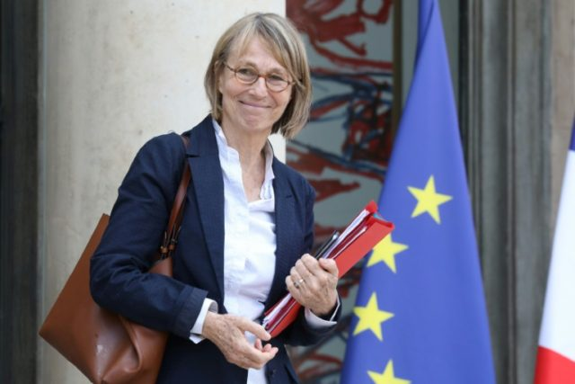 "File photo of French Culture Minister Francoise Nyssen who says ""a sure way of destroying freedom, faced with the current dangers, is to do nothing"", as debate rages over a government bill to beat so-called fake news during election campaigns"