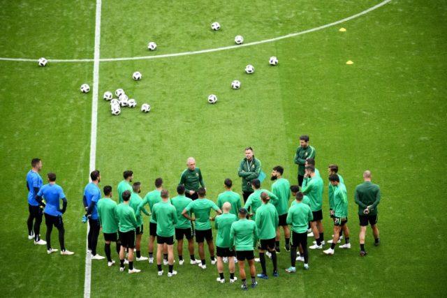 Australia coach Bert van Marwijk believes team spirit and guts may upset France