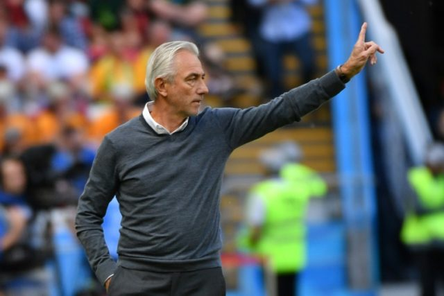 Bert van Marwijk was unhappy with the use of the VAR system