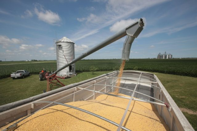 Farmer John Duffy loads soybeans onto a truck before taking them to a grain elevator on June 13, 2018 in Dwight, Illinois
