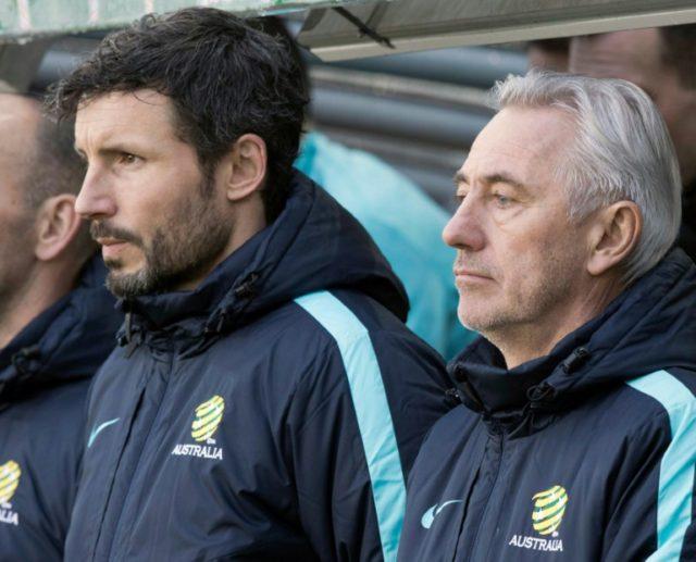 Mark van Bommel will switch from assisting Australia head coach Bert van Marwijk to running PSV Eindhoven