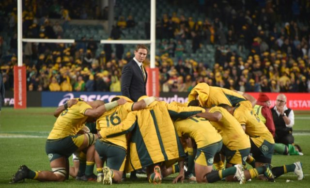 Wallabies coach Michael Cheika was not happy with the officiating during the Ireland series