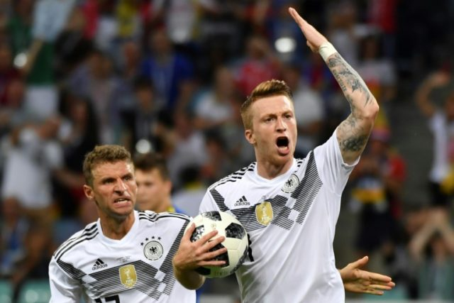 Germany forward Marco Reus (right) celebrates his goal against Sweden in Sochi