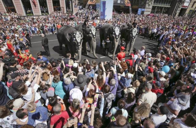 Animal charities to open European circus elephant sanctuary