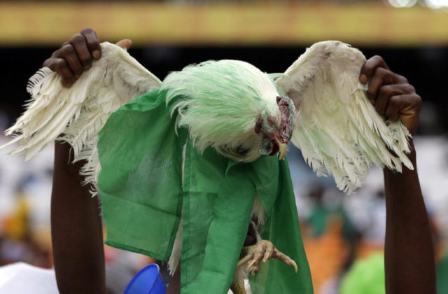 No live chickens at the World Cup for Nigeria fans